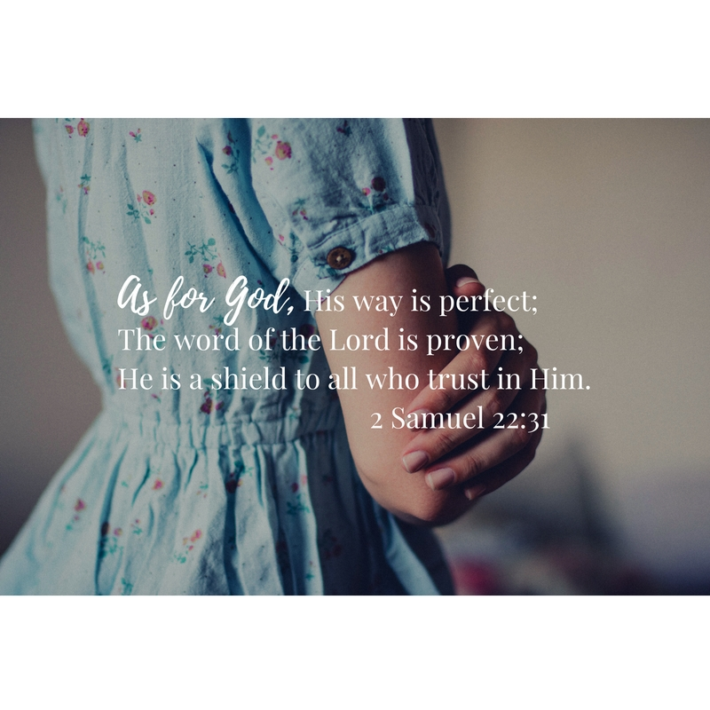As for God, His way is perfect;The word of the Lord is proven;He is a shield to all who trust in Him. 2 Samuel 22_31